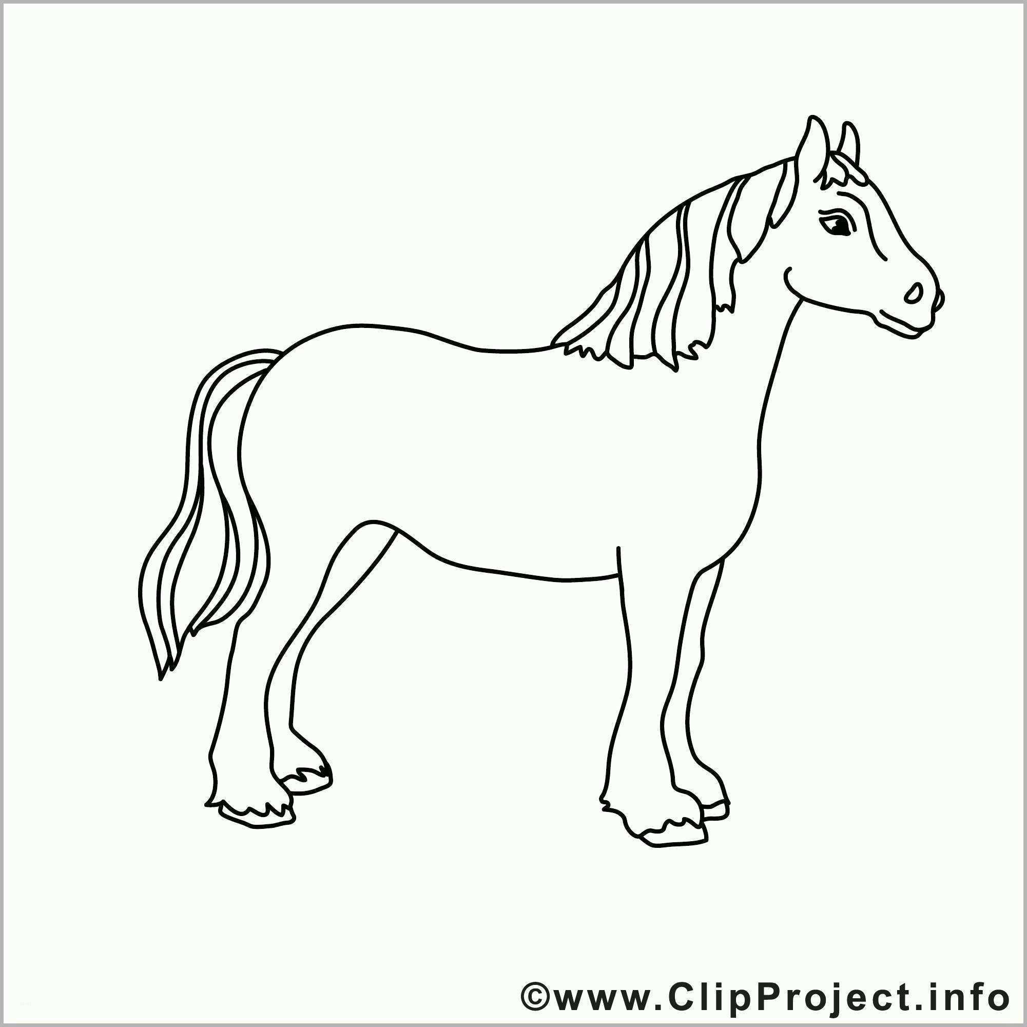 erschwinglich pferde zeichnungen vorlagen luxus pferd bild