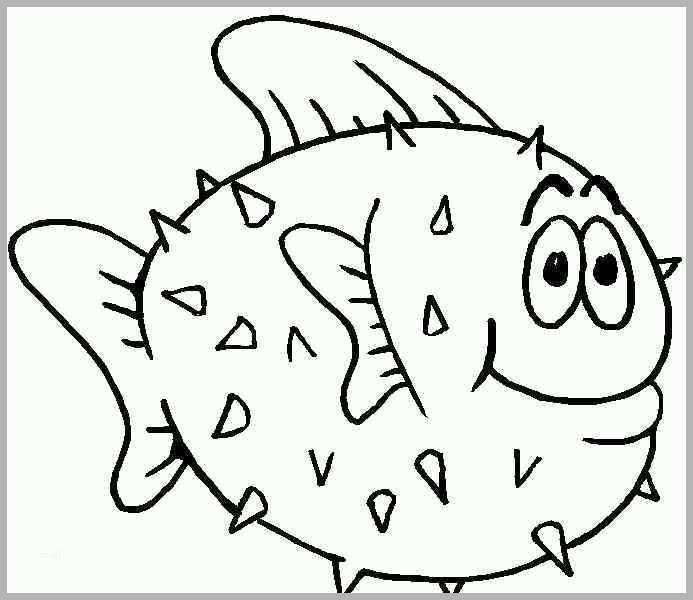 hervorragen fische malvorlagen 1049 malvorlage fische