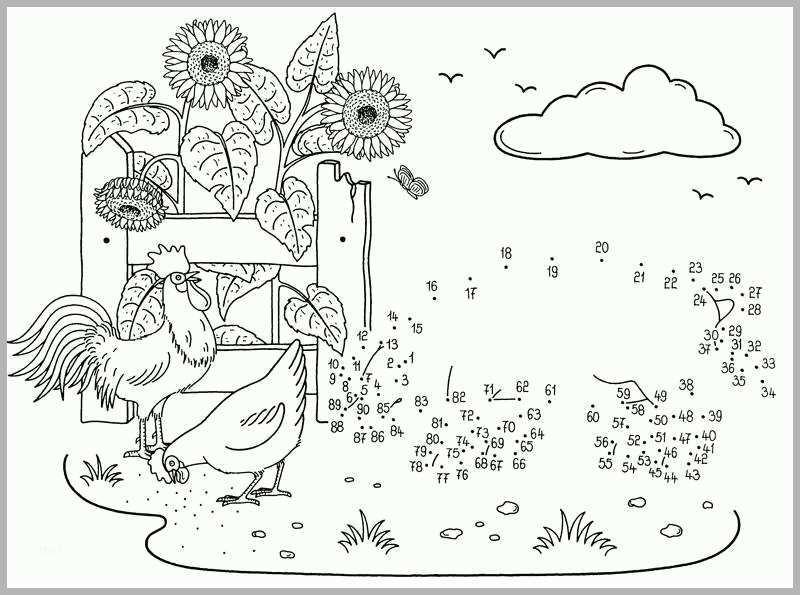 kreativ kostenlose malvorlage malen nach zahlen schwein