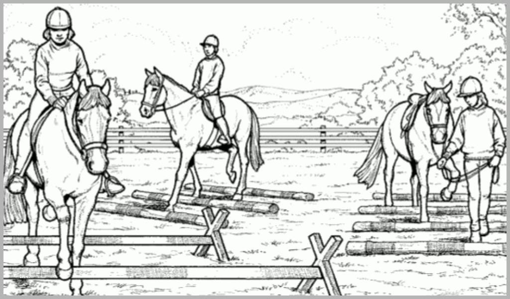 wunderschönen ausmalbilder pferde springreiten